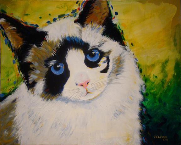 The Aaron Zitzer family cat!