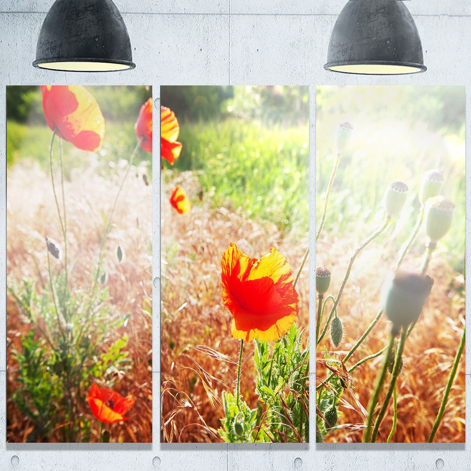 Designart \'Beautiful Morning View of Poppies\' Floral Glossy Metal ...