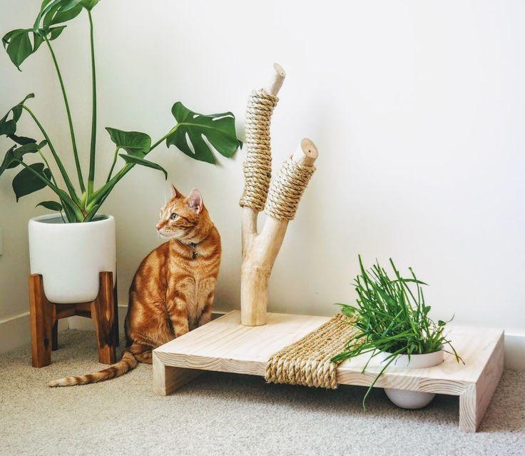 Photo of Muebles para gatos, rascador para gatos, juguete para gatos, centro para gatos, hierba para gatos, interiores …