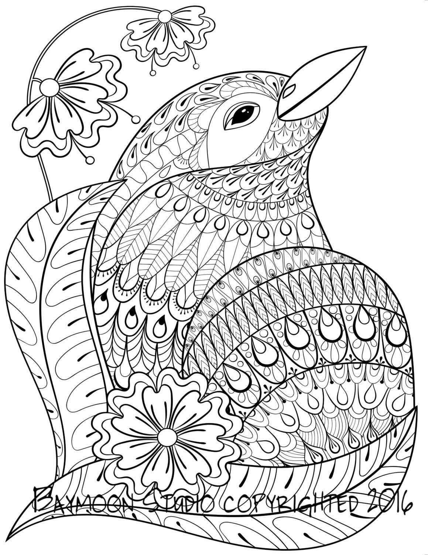 Aves Flores P 225 Gina Imprimible Para Colorear Por