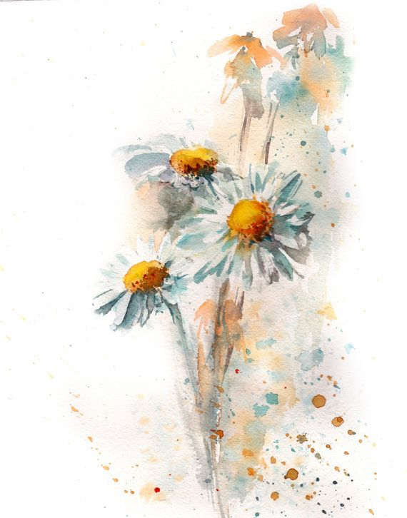Giclee Print: Monarch and Gerba Daisies by Charlsie Kelly