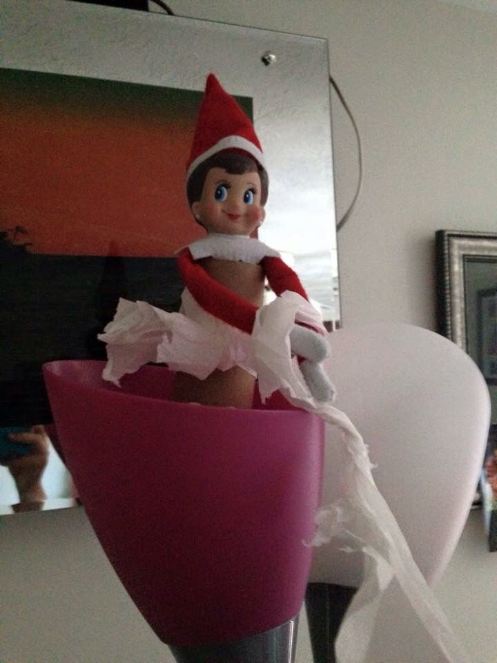 Rosy the elf toilet papered continued
