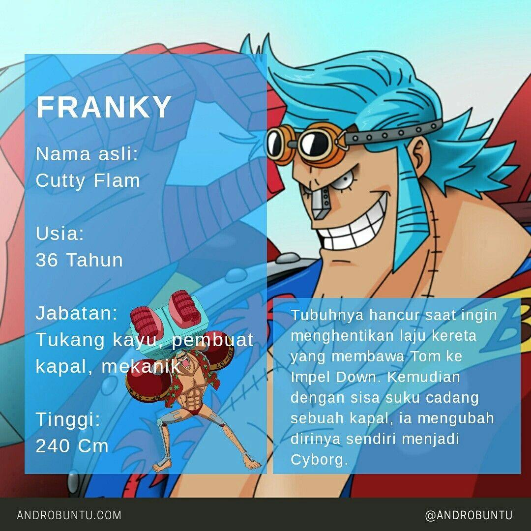 Biodata Singkat Franky One Piece Baca Selengkapnya Di Androbuntu