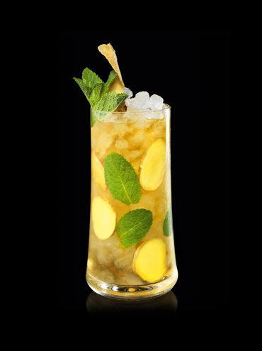 Hennessy Ginger - Go online to discover this cocktail recipe, which combines the refined taste of Hennessy cognac with the bitterness of Ginger Ale. A shaker cocktail recipe.