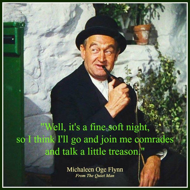 Quiet Man Michaleen Quote Jpg Jpg 762 762 Irish Funny Irish Quotes Irish Proverbs