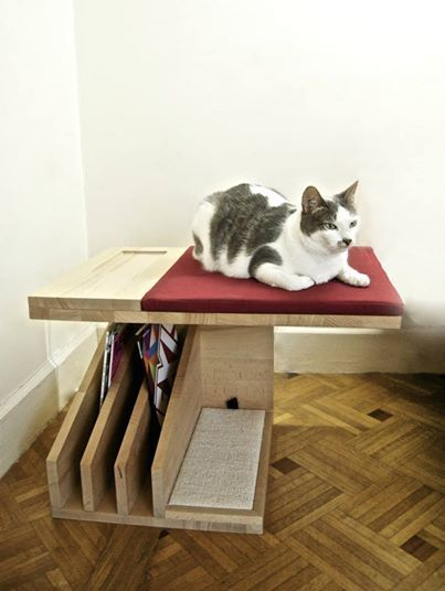 Side Table Cat Shelf Shelves Furniture Office