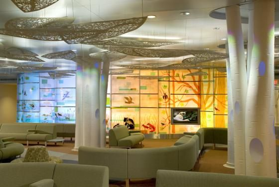 This Is The Pediatric Center At Denny Sanford In Rochester Minnesota Check Out Details Of Wonderful Space