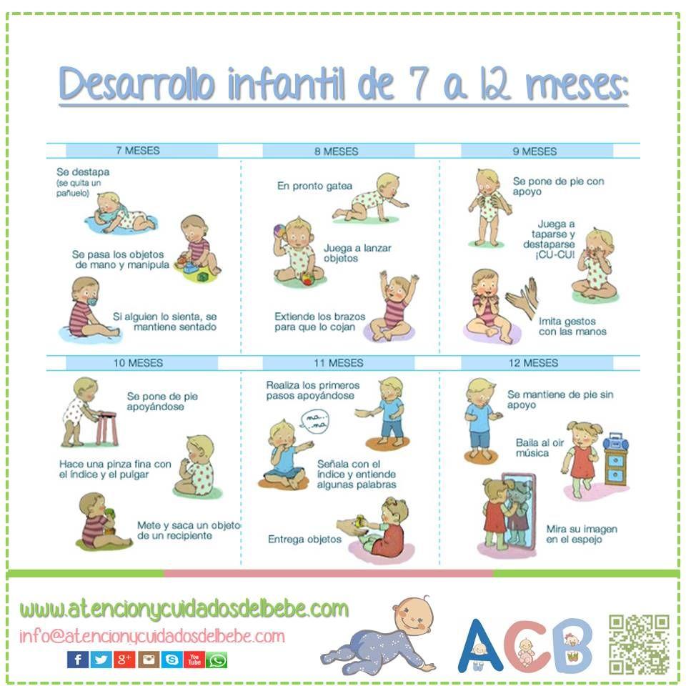 Desarrollo infantil de 7 a 12 meses - Desarrollo bebe 6 meses ...