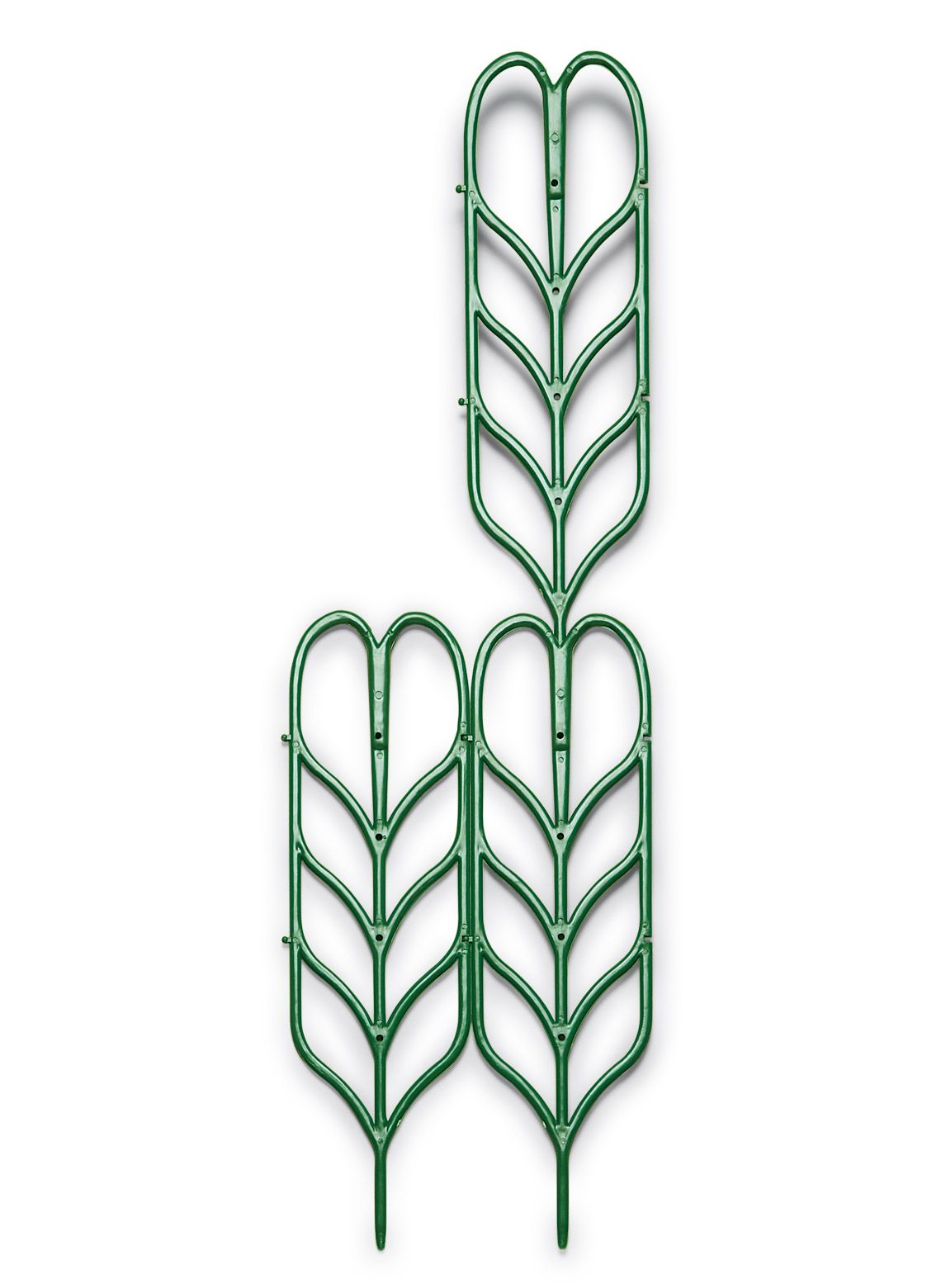 Plant Support For Indoor Or Outdoor Climbing Plants Plant 400 x 300