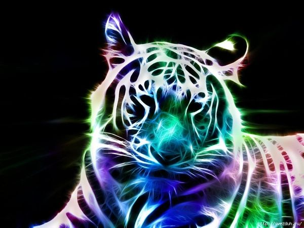 Animals Wallpaper 3d Hd 2 0 Apk Download: La Vida Es Color