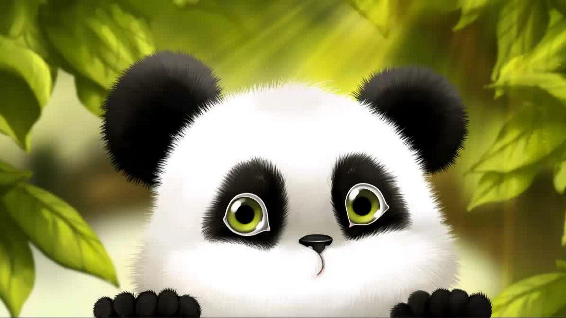 Cute Baby Panda Cartoon Wallpaper Panda background