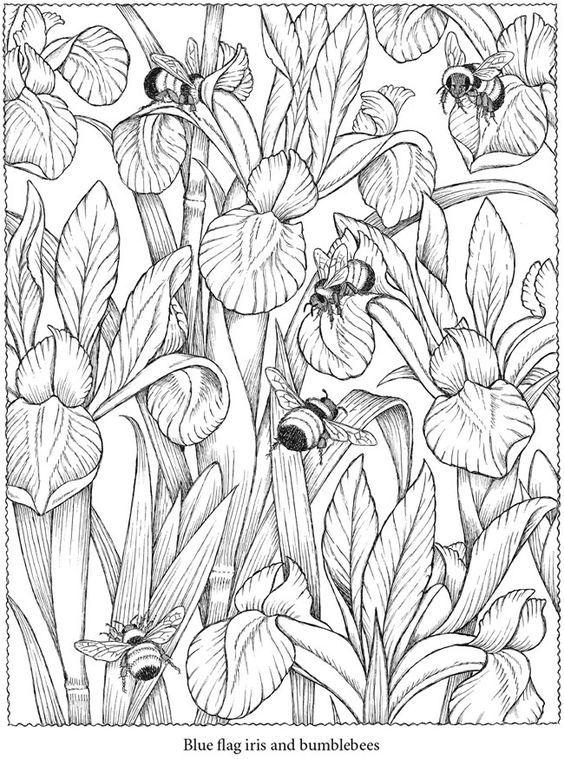 60 Desenhos para Adultos | Vinil, Porcelana y Primavera