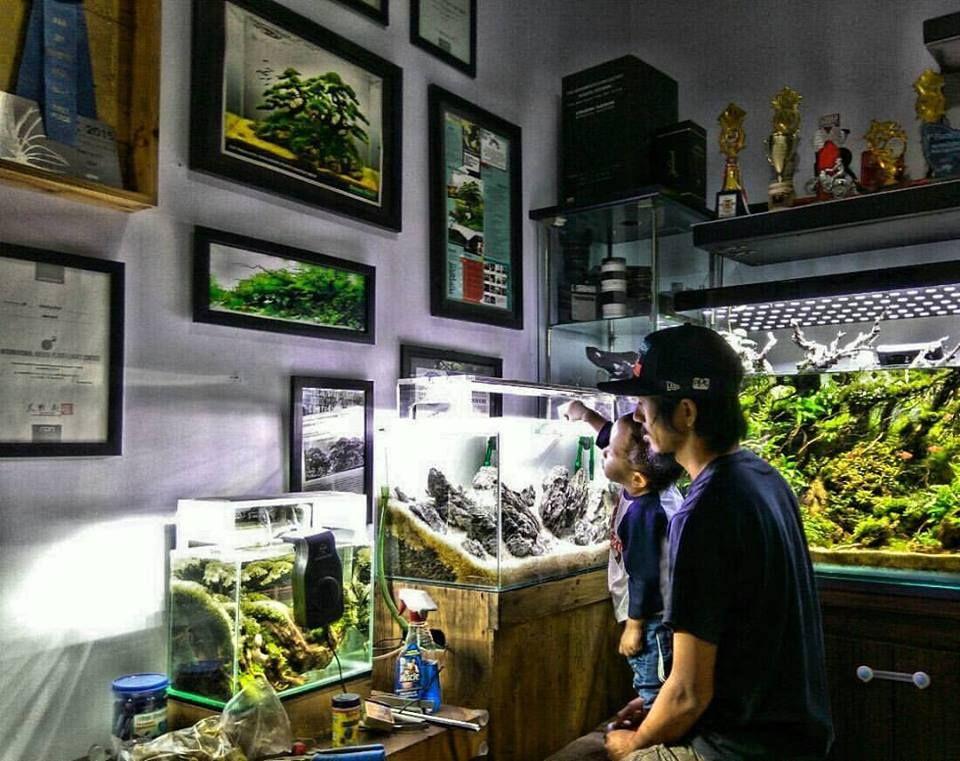 Upbringing – at home with a professional aquascaper