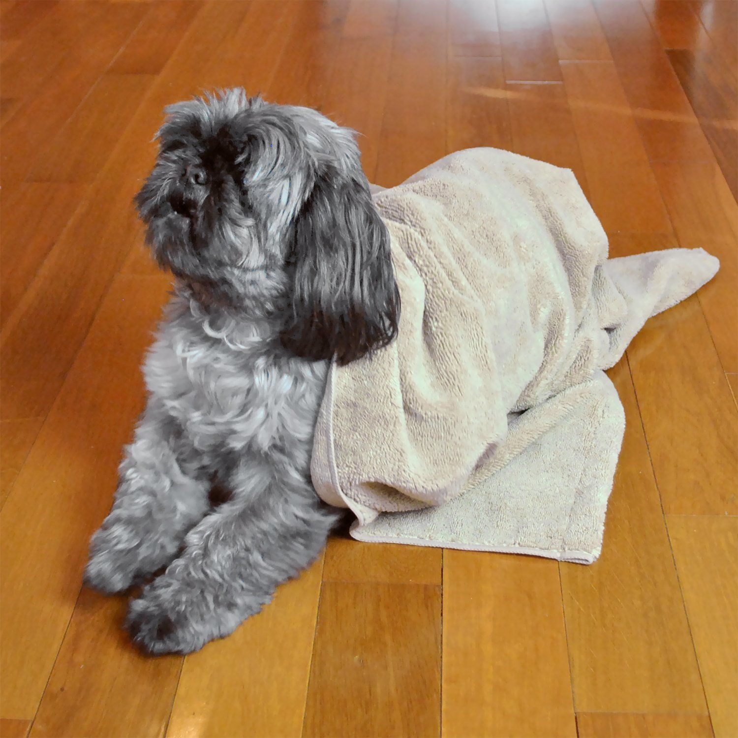 DII Bone Dry Microfiber Pet Bath Towel with Embroidered