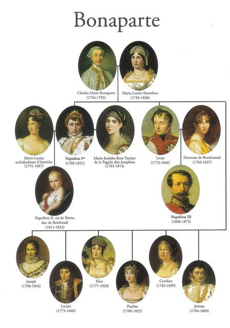 napoleon family tree napoleon pinterest history. Black Bedroom Furniture Sets. Home Design Ideas