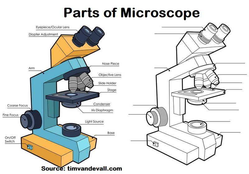 Microscope Laboratory Microscope Science Equipment Best Microscope