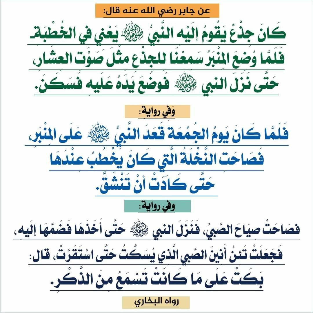 Pin By The Noble Quran On I Love Allah Quran Islam The Prophet Miracles Hadith Heaven Prophets Faith Prayer Dua حكم وعبر احاديث الله اسلام قرآن دعاء Bullet Journal Journal Aic