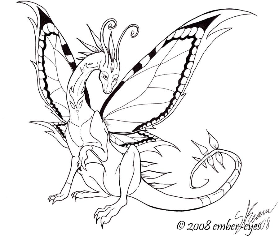 Line Drawing Dragon : Butterfly dragon line art by ember eyes on deviantart