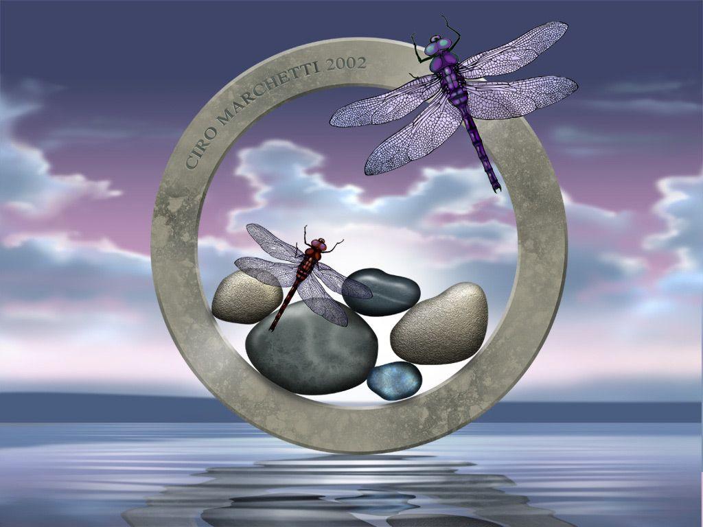 Desktop Background Dragonfly Art