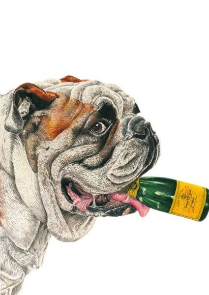 Noble Rot Limited Edition Art Print - English Sparkling Wine VS Champagne Print