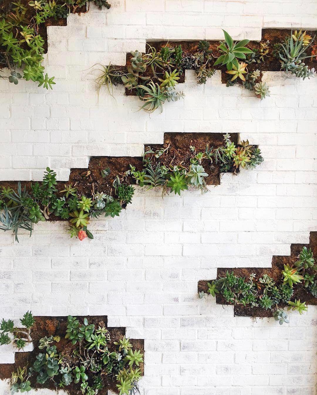 White Brick Succulents Happy Succulentsunday Friends Hauteinthedesert Vertical Garden Wall Garden Wall Succulents