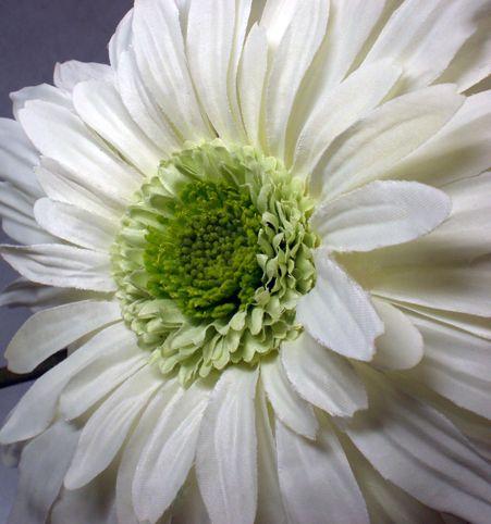 White silk gerber daisy flowers pinterest gerbera gerbera silk flowers white gerbera daisies 7 flowers 299 each 12 for 250 each mightylinksfo