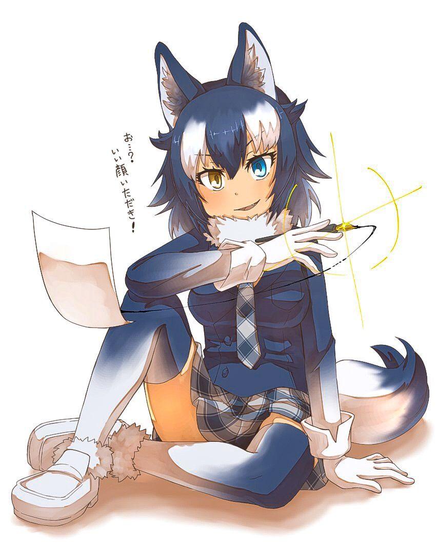 Grey Wolf Anime Wolf Girl Cat Girl Neko Girl