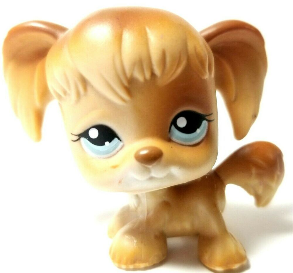 Lps Littlest Pet Shop Toy 2004 Cocker Spaniel Dog 200 Golden Tan Brown Blue Eyes Hasbro Lps Littlest Pet Shop Cocker Spaniel Dog Little Pet Shop Toys