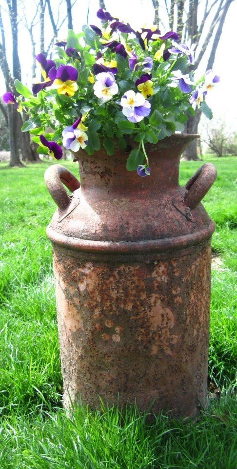 Cool Idea For Those Old Milk Cans I Found This On The Garden Of Eva Old Milk Cans Garden Junk Garden Projects