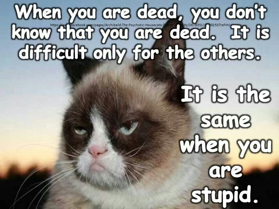 Ha! Just sayin.....When you are dead, you don't know that ...