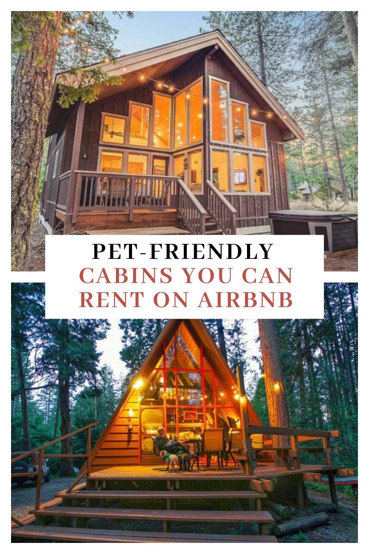 Pet Friendly Cabin Rentals On Airbnb Pet Friendly Cabins Cabin Cabin Rentals