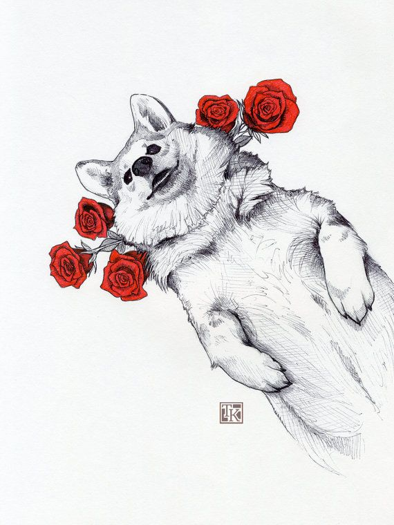 items similar to ballpoint and micron pen drawing of corgi playing with roses print from original on etsy