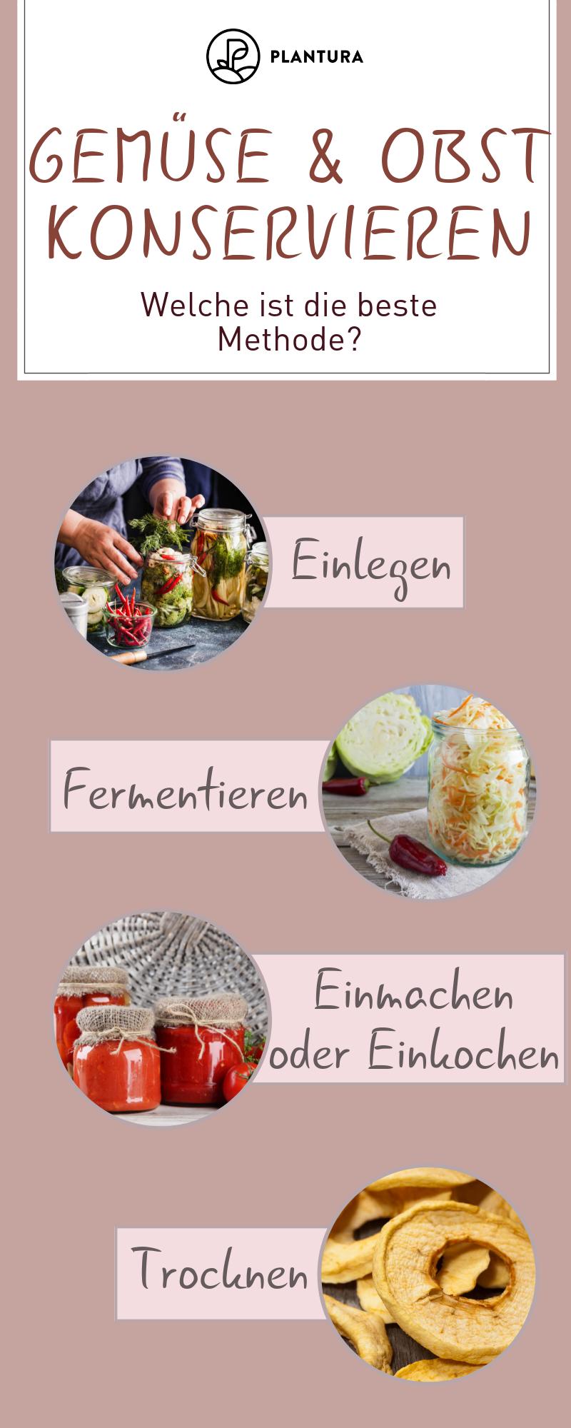 Gemüse und Obst konservieren: Einmachen, einfrieren ...