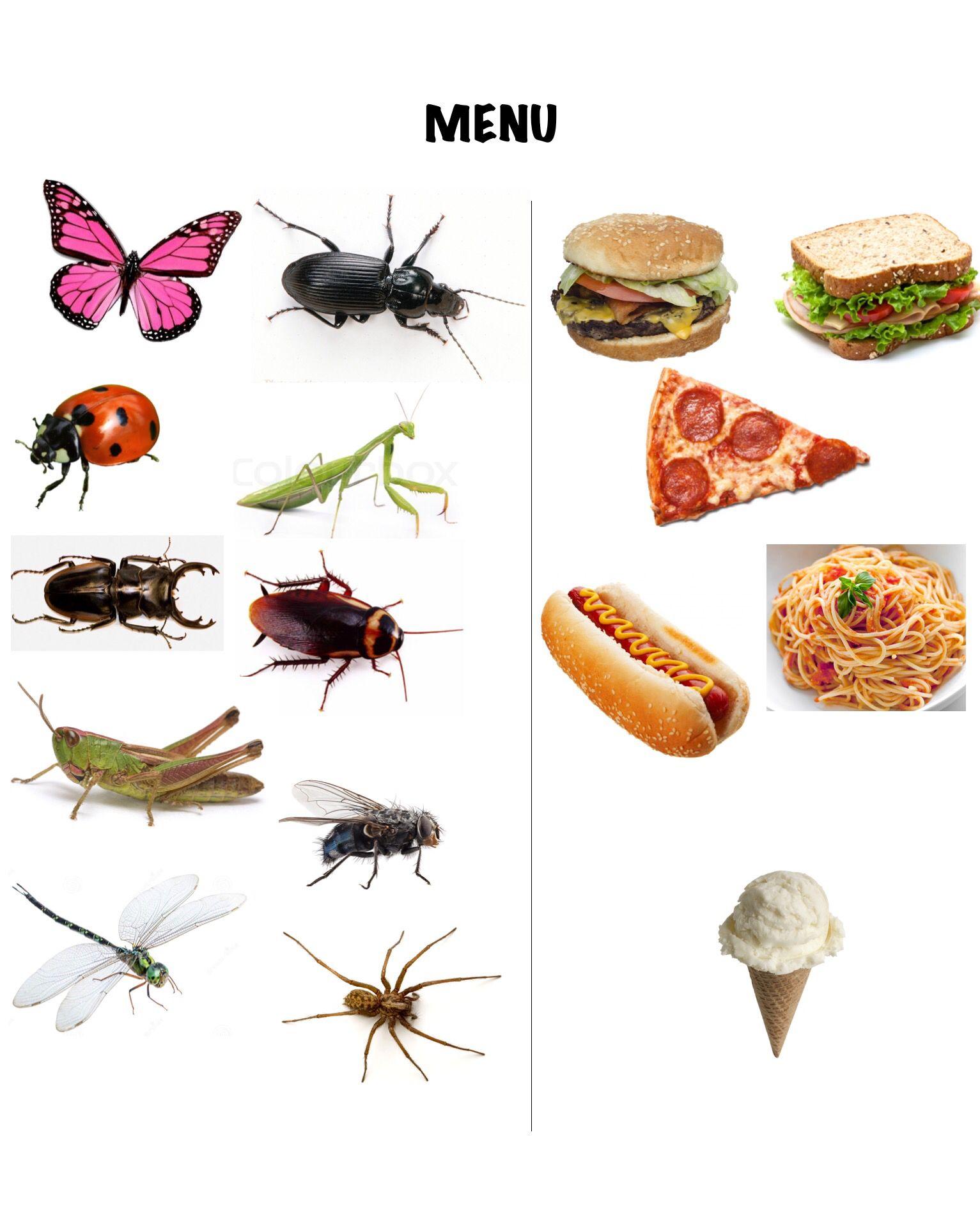 Bug Menu