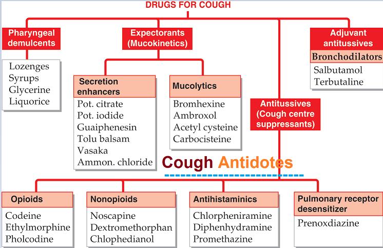 Cough Medicines Cough Medicine Medicine Cough