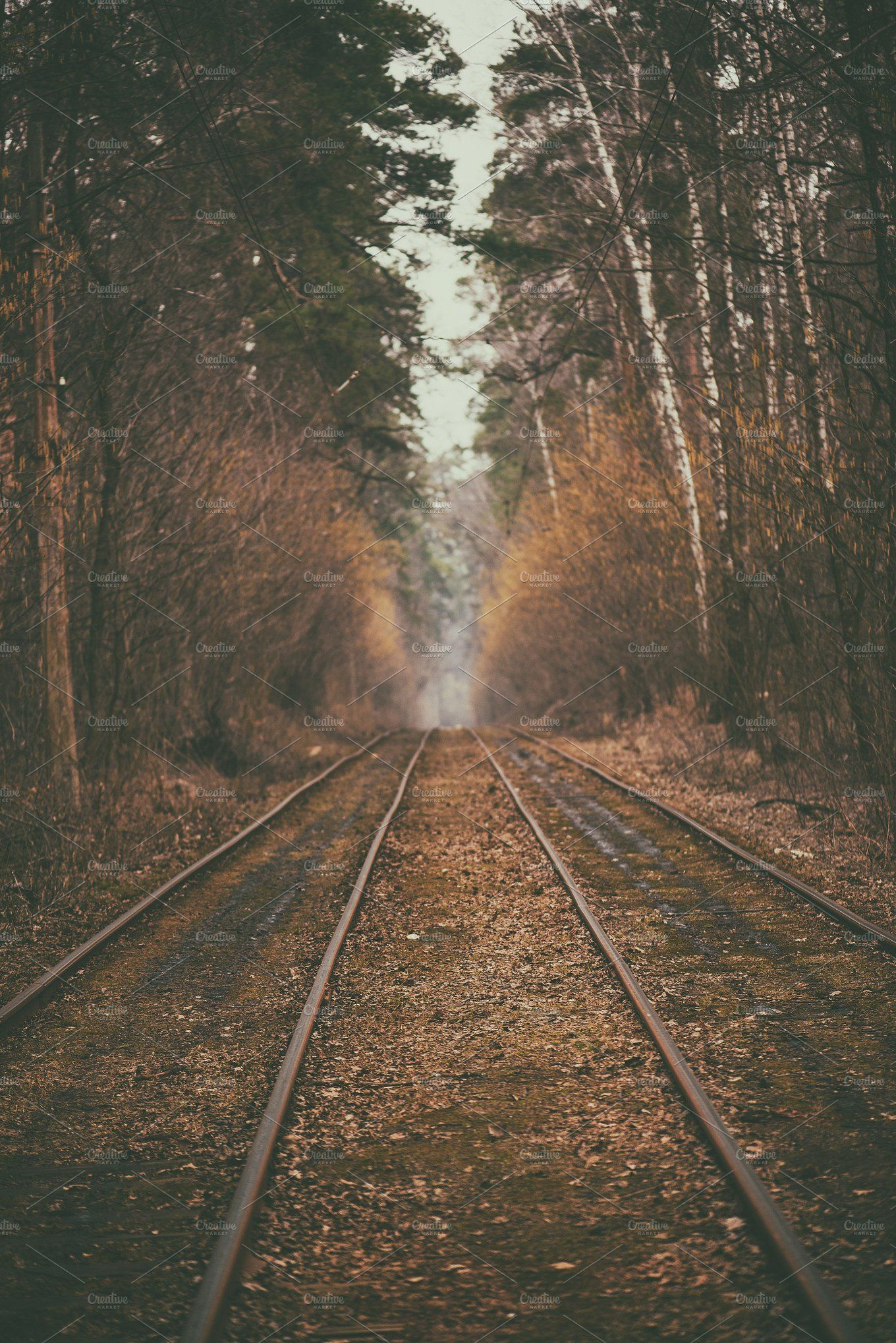 Rails In The Forest Vintage Nature Photography Travel Photography Nature Hipster Photography