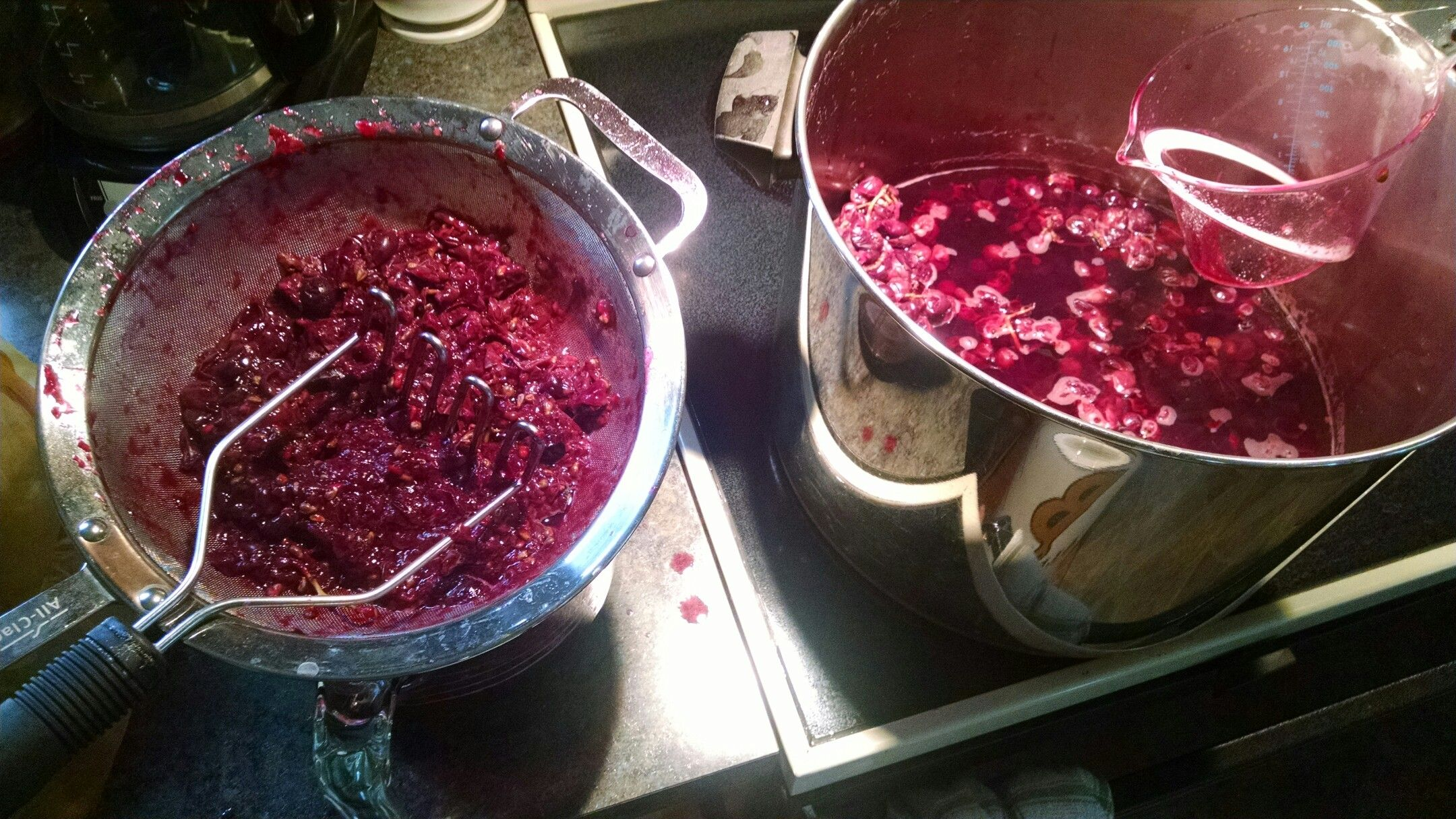 Wild Grape Wine Food Com Recipe Grapes Recipes Cleaning Dishes