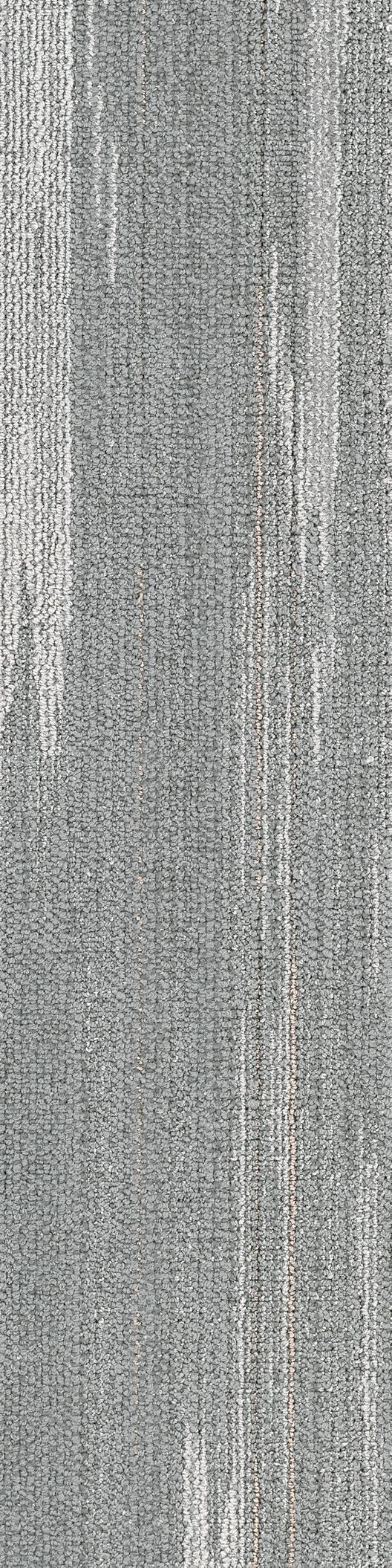Home Shaw Contract Textured carpet, Commercial carpet