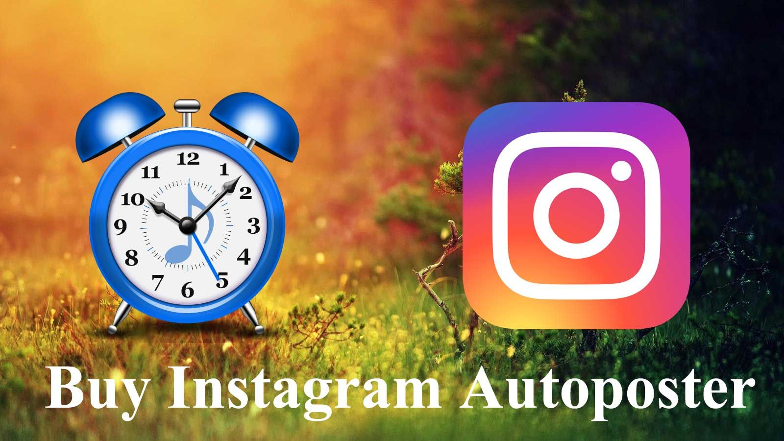 Auto Poster Is A Perfect Choice For Auto Posting Your Content To Famous Social Media Platforms Like Facebook Business Pages Social Media Social Media Platforms