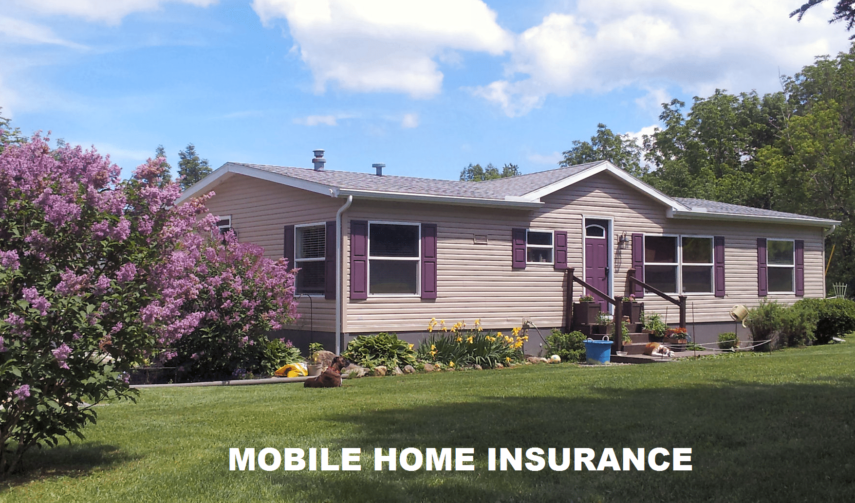 Mobile Home Insurance California Mobile Home Landscaping Mobile