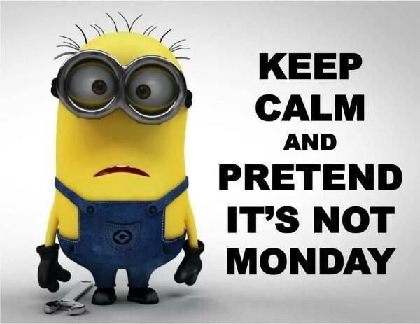Monday Quotes Funny Prepossessing Oh No It's Monday  Weekly Fun  Pinterest Design Inspiration