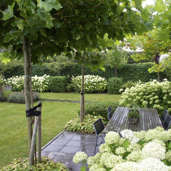 Moderne witte tuin tuin pinterest tuin tuinen en for Moderne kleine tuin
