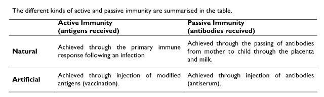 Active Immunity Vs Passive Immunity Nursing Stuff Pinterest