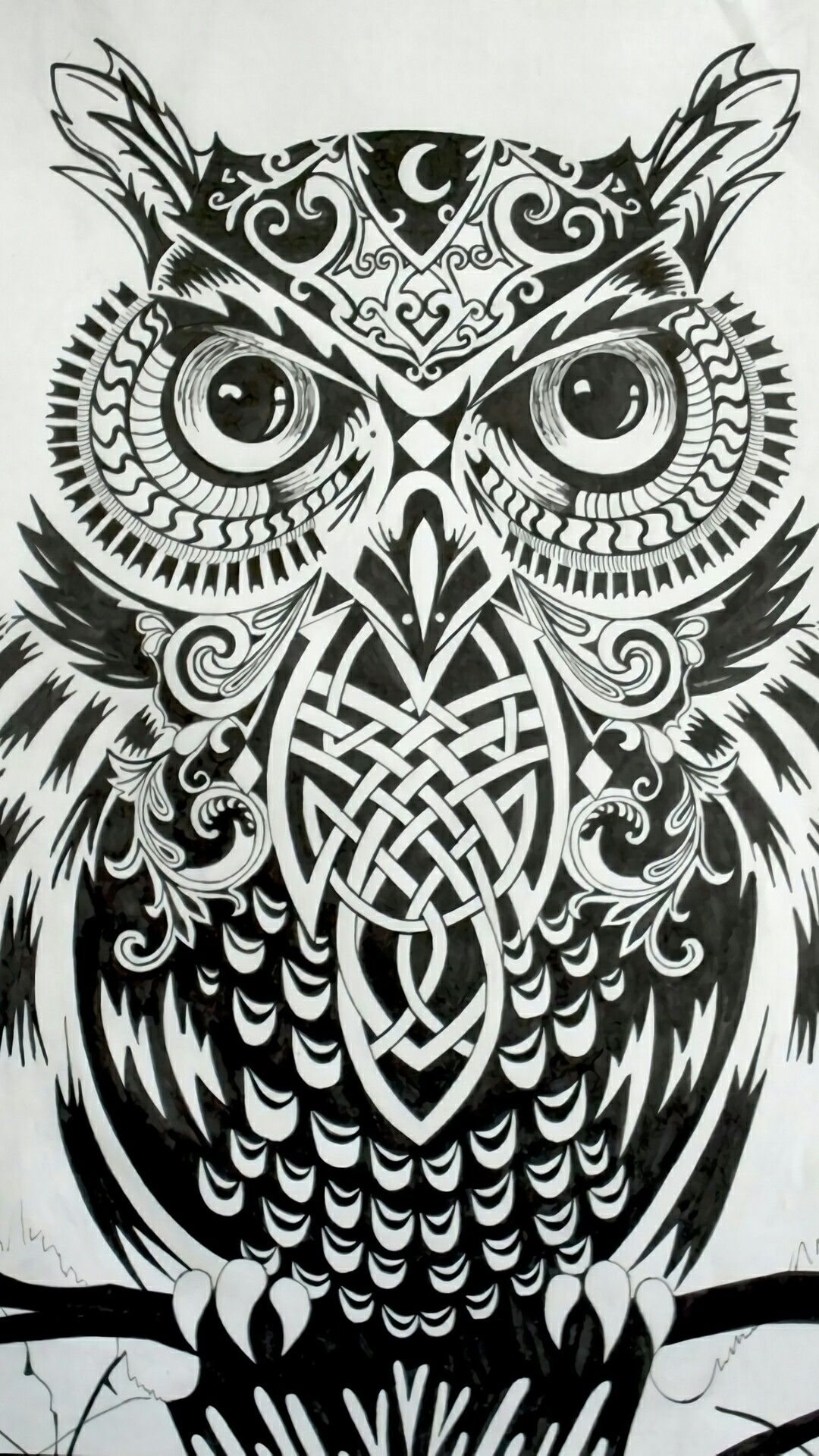 Pin by seo on tattoo pinterest owl tattoos and owl tattoo drawings