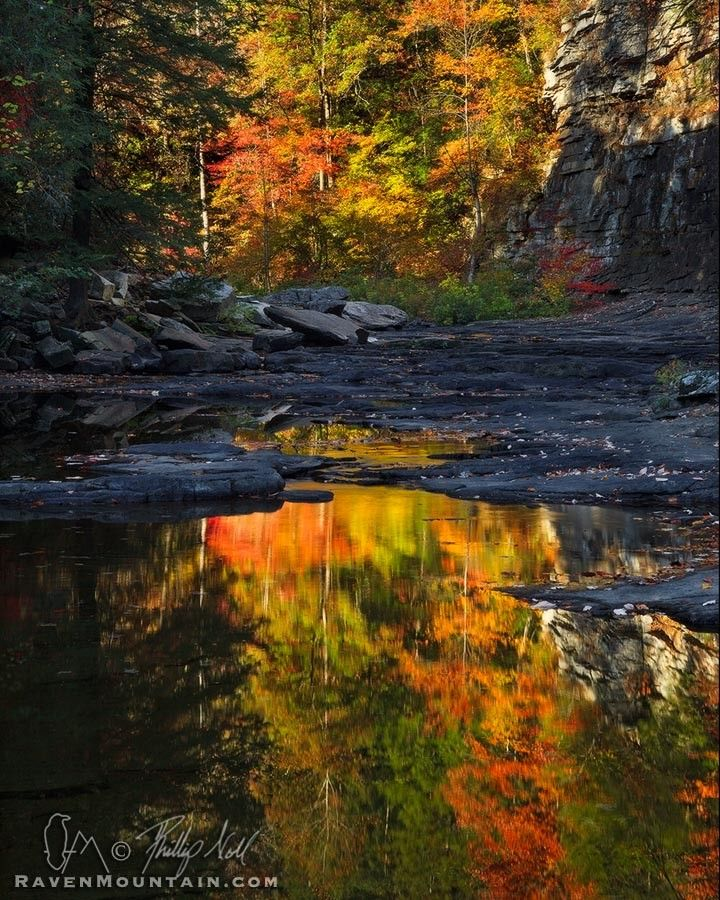 Cane Creek Reflection - Fall Creek Falls State Park, Tennessee