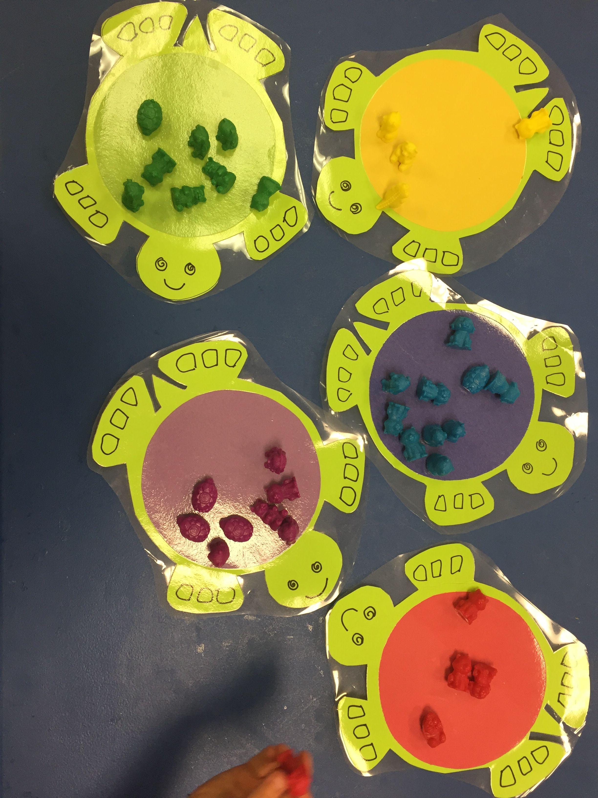 Turtle Preschool Activity For Color Match