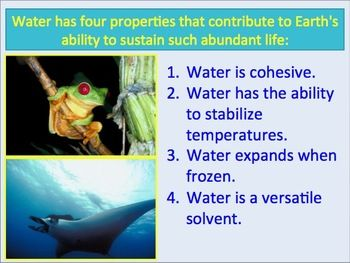 an analysis of the importance of water to life on earth Water is said to have played a key role in existence of life on earth in fact, many theories suggest that early forms of life began in oceans and thrived there with two thirds of the earth's .