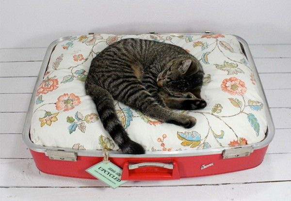 Modern Cat Furniture Vintage Suitcases