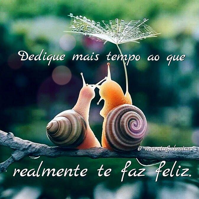 Frases Felicidade Reflexão Bomdia Pensamentos Amor B21