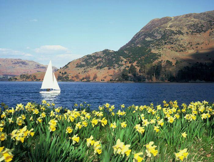 Ullswater, daffodils and sailboat